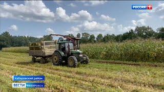 В Хабаровском крае завершилась инвентаризация земель с мелиоративными системами