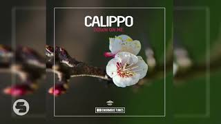 Calippo   Down On Me (Organ Pleasure Edit)