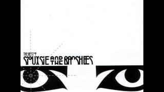 Picture of a band or musician: Siouxsie & The Banshees