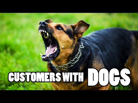 Customers With Dogs – PUT YOUR DOG AWAY!