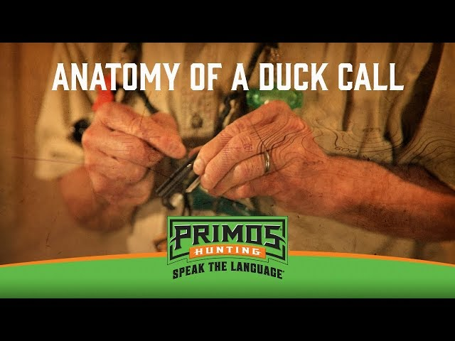 Anatomy of a Duck Call