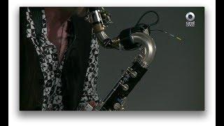 Musivolución - Los instrumentos