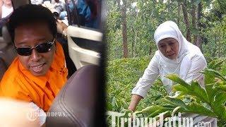 Fokus Jadi Gubernur Jawa Timur, Khofifah Belum Pikirkan Menjadi Ketua Umum PPP Gantikan Romahurmuziy