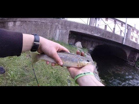 La pesca su una verga con un galleggiante dalla costa