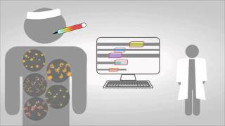 systems biology explained
