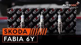 Skoda Fabia II 1 6TDI 66kW acceleration 0-130 - Most Popular Videos