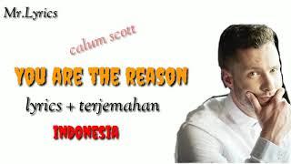 You Are The Reason Lirik Dan Terjemahan   Calum Scott  