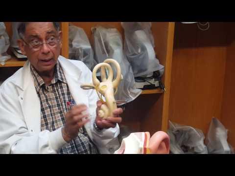 Preparazione per lecografia della prostata negli uomini