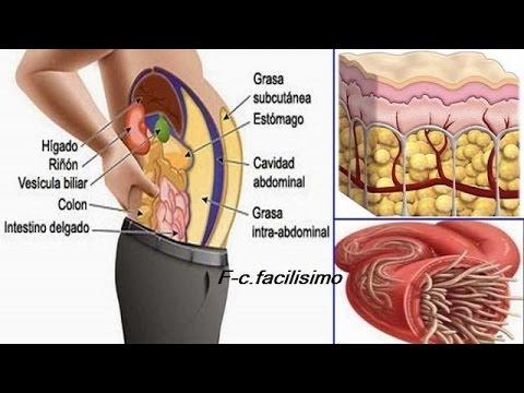 Como arreglar la grasa del vientre y los lados del ejercicio de la estampa
