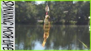 Рыбалка в калининграде на голубых озерах