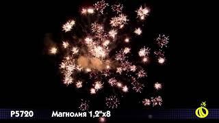 """Римская свеча """"Магнолия"""" P5720 (1,2""""х8) от компании Интернет-магазин SalutMARI - видео"""