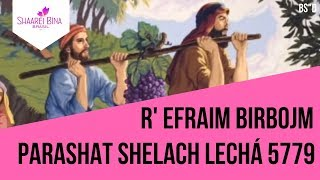 Parashá Shelach Lechá