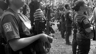 NPA in Bicol celebrates CPP's 50th anniversary