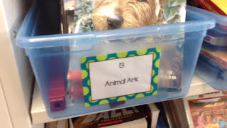 Classroom Library Tour