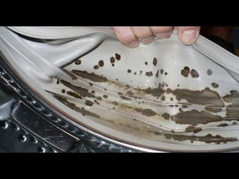 Как отмыть стиральную машину от черной плесени!