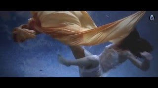 Dennis Sheperd & Sarah Lynn - Dive (Original Mix)