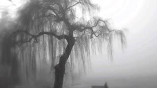 L. Janáček, In the Mists (V mlhách); III. Andantino