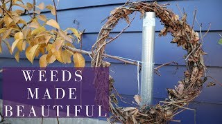 WEEDS TO WREATH: Making Virginia Creeper Vines Into Decor