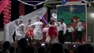preview picture of video 'Encendido de la Navidad de la Escuela Jose Cordero Rosario de Palenque.'