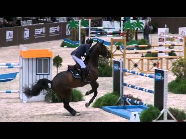 Damline of approved stallion Erco van 't Roosakker