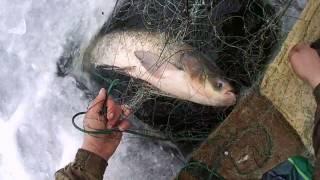 ловля рыбы зимой сетями на частном водоеме