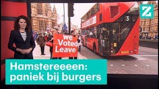 Britten hamsteren eten en medicijnen voor brexit • Z zoekt uit