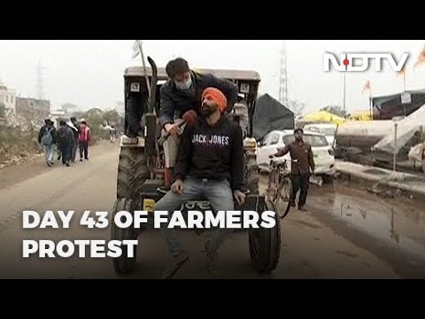 Farmers Protest | Tractor Rally By Farmers Near Delhi Today