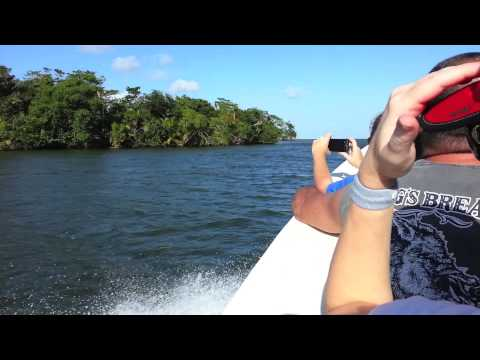 Cruising down a river in Belize (Royal Caribbean)