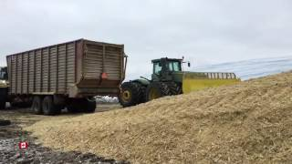 USA Thanksgiving in Canada corn earlage harvest