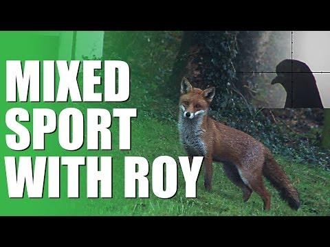 Fieldsports Britain – Mixed sport with Roy Lupton