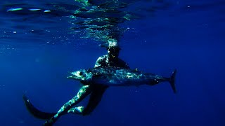 Spearfishing - Breathless Paradise