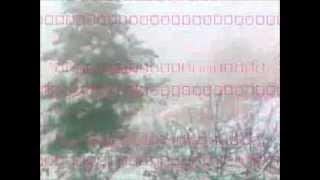 preview picture of video 'تساقط الثلوج في مدينة السلط منطقة سوادا - الخميس 12_12_2013'