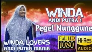 Pegel Nunggune - Winda Andi Putra (Official Music)