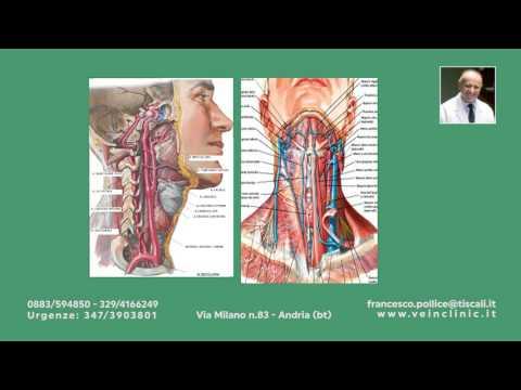 Coordinamento dei muscoli flessori delle articolazioni viene eseguita
