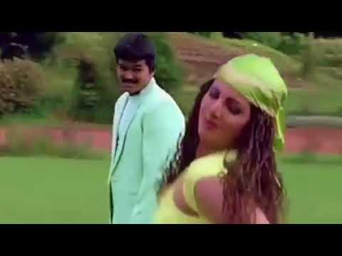 """Ennavale Ennavale""   Ninaithen Vandhai   Vijay song   Whatsapp status video"
