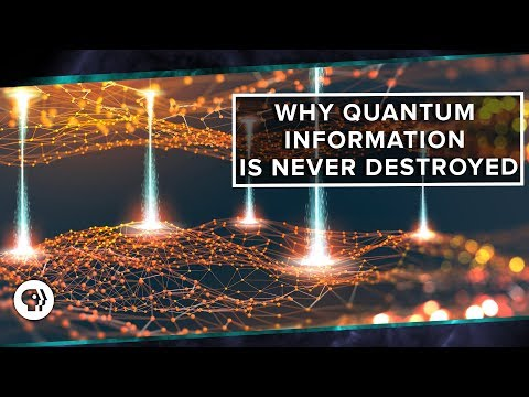 Why Quantum Information is Never Destroyed
