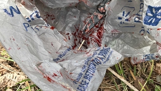 Vlog / Exploring Woods: BLOODY KNIFE FOUND! POSSIBLE MURDER WEAPON?! - Video Youtube
