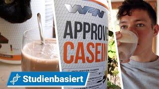 Lohnt sich ein Casein? - Approved Casein von WFN im Test   Fitness Food Corner
