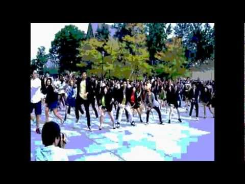 Skeptic and Leighton Geniuss Featuring Flash Mob - Gangnam Crazy Style