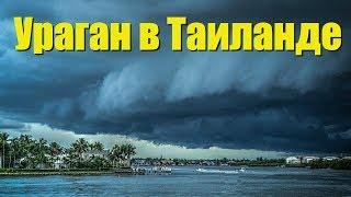 Ураган в Таиланде | Сильнейший за 50 лет | За несколько часов ДО