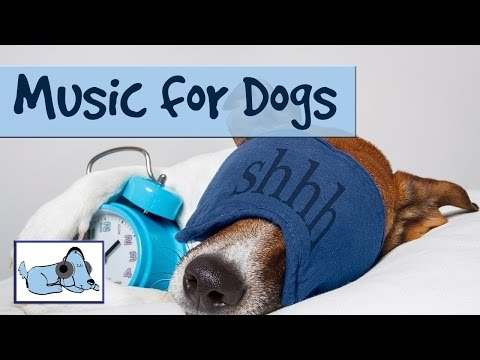 15+ Minutes Of Calming Dog Music. Music To Make Dogs Sleep! Relaxing, Soothing!