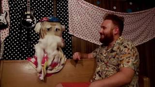 New Video! Cymbals of Love - Alex Kahn