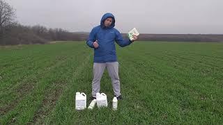 СТИМПО - Стимулятор Роста для листовой подкормки обработки зерновых. Норма 20-25 мл/га. от компании ТД «АВС СТАНДАРТ УКРАЇНА» - видео 2