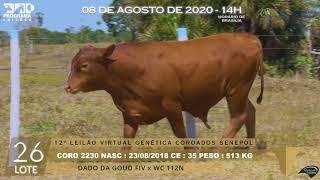 Coro 2230 b4 fiv