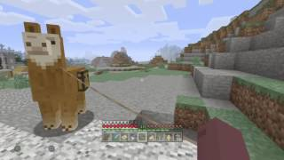 Minecraft - So I got that going for me... - Trophy/Achievement Guide