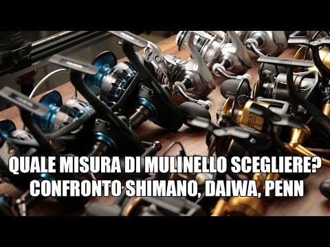 QUALE MISURA DI MULINELLO SCEGLIERE? - Shimano - Daiwa - Penn