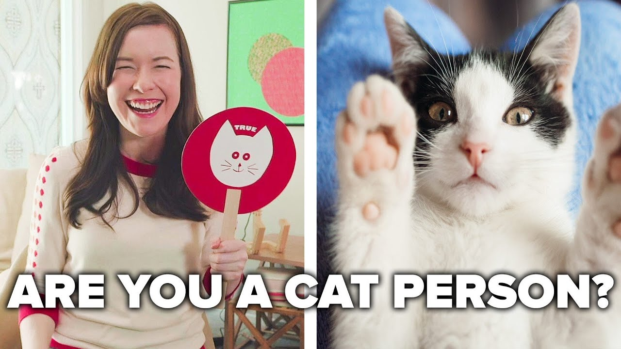 Cat People Guess Cat Facts // Presented By Royal Canin® thumbnail