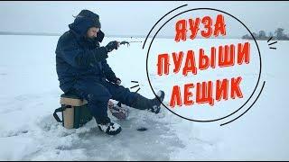 Яузское водохранилище отчеты о рыбалке 2019 пудыши