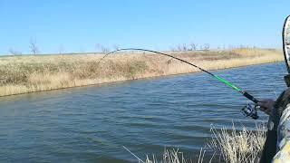 Рыбалка на реке сал в ростовской области