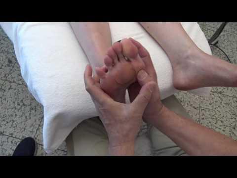 Die Ansätze auf den Fingern der Beine des Grundes